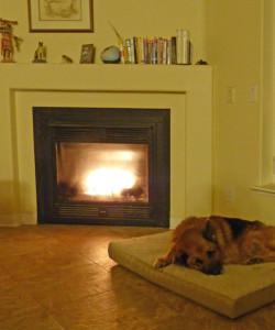 Caesar_fireplace20391